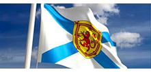 ns_flag